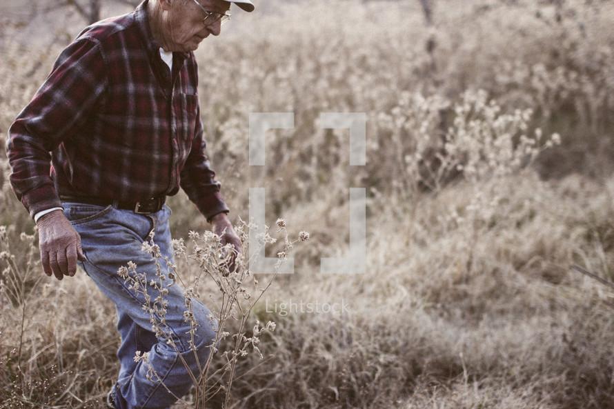 man walking through dense dried grasses