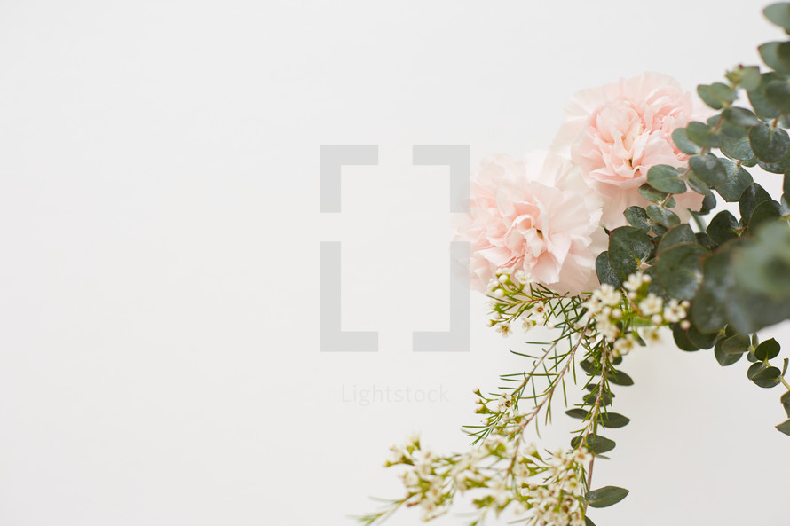 pink carnations and eucalyptus sprigs