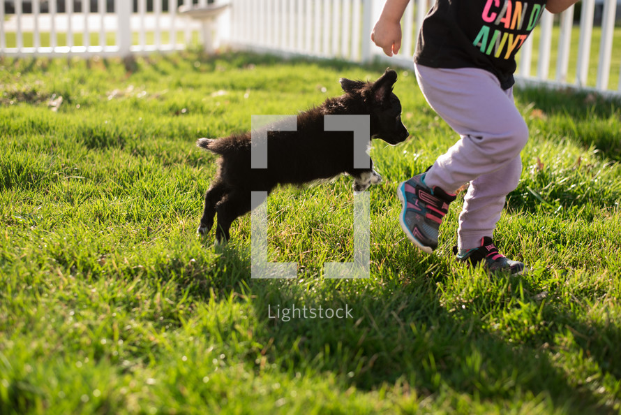 toddler girl running with a puppy