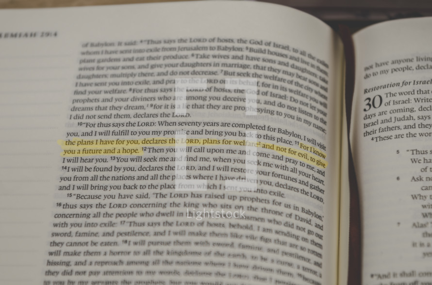 highlighted scripture