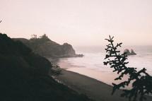 beach shore at sunrise