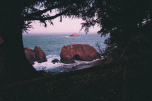 opening through the trees and view of rocks in the ocean