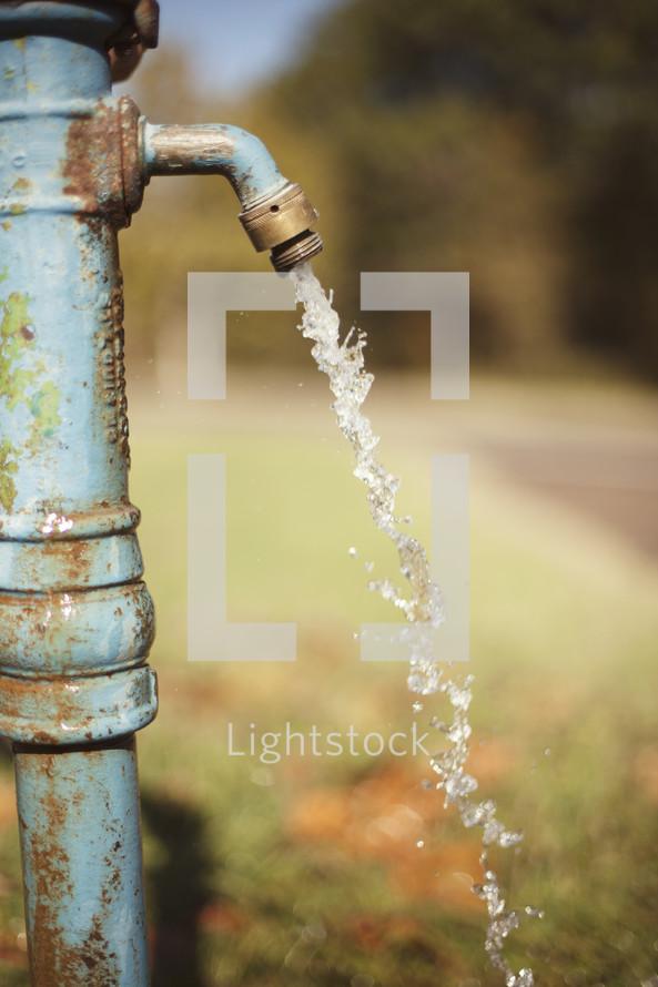 Faucet water.