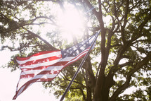 American flag under a tree