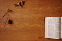 dried fall leaves on open Bible on a table