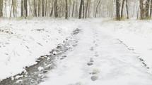 footprints on path in fresh snow