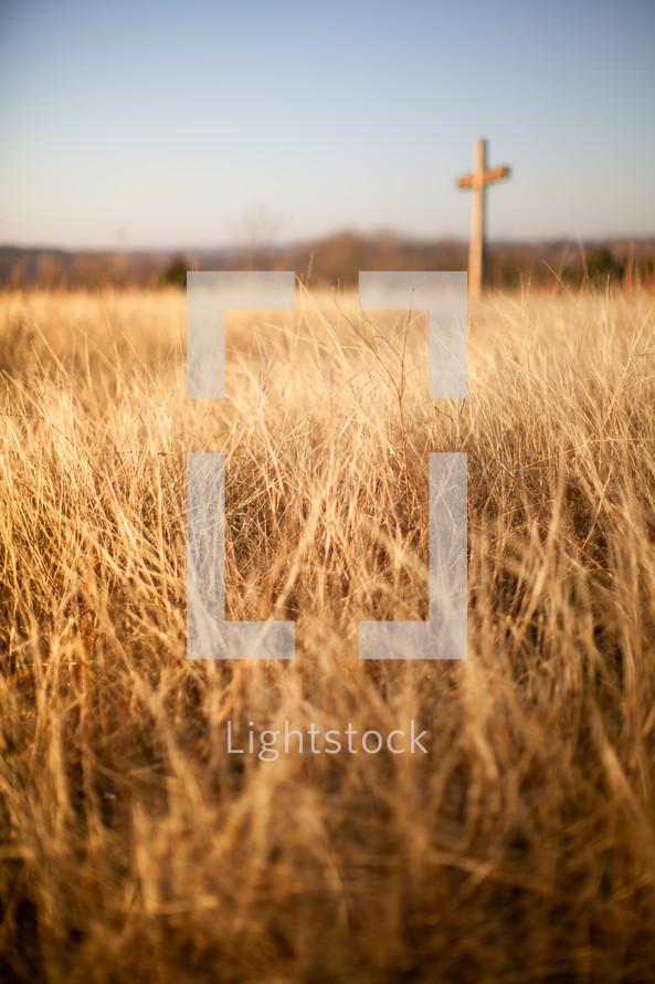 cross in a field