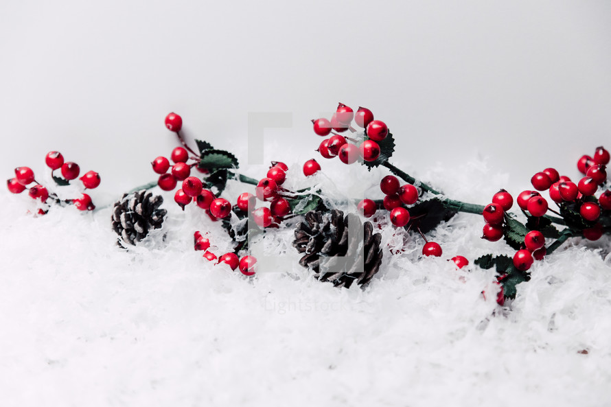 berries and pine cones in snow