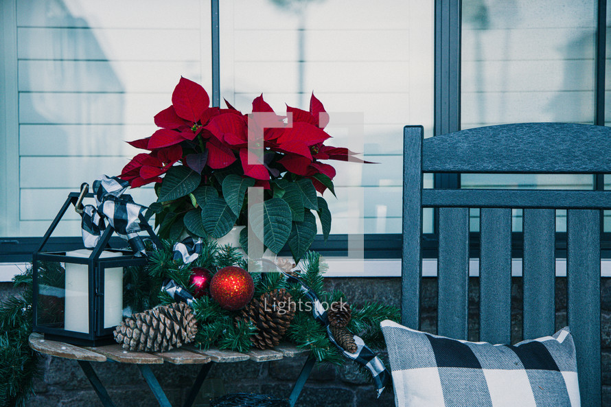red poinsettia on a front porch