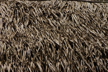 A closeup of a thatched roof made of large leaves.