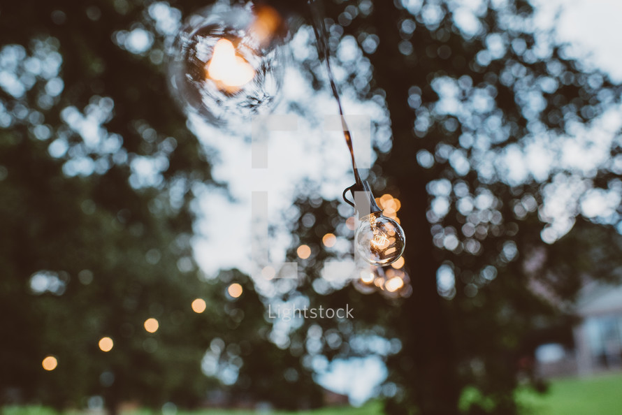 globe lights on a string outdoors