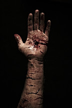 The cuts and wounds from the hand of Jesus