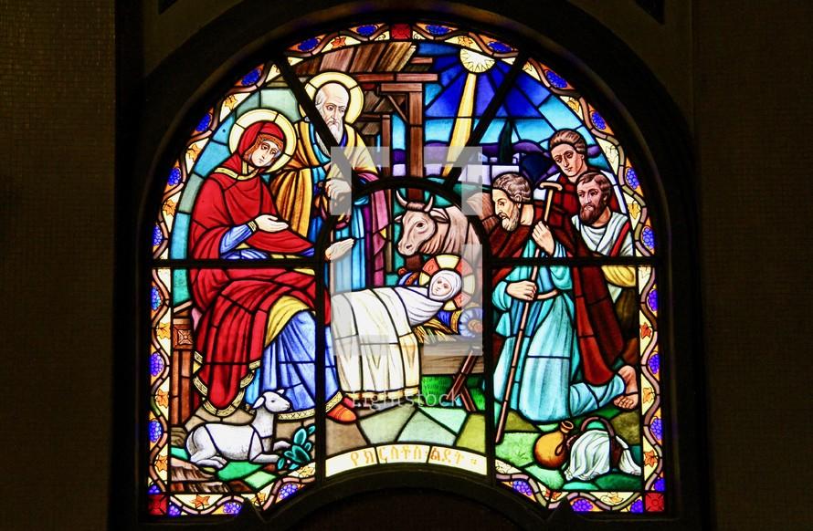 Navitivity manger scene stained glass window