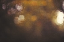 blurry bokeh fall picture