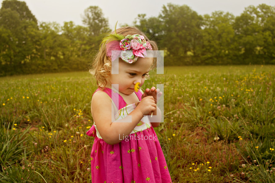 toddler girl in a field smelling a dandy lion flower