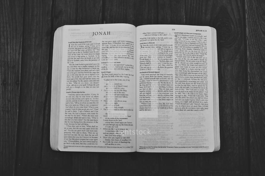 Open Bible in book of Jonah