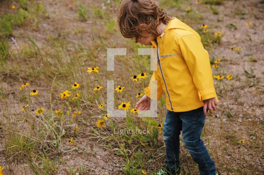 toddler picking flowers