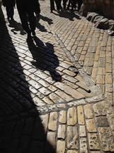 shadows on a cobblestone street