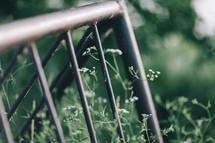 bike rack and tall grass