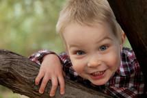 boy toddler peeking through a tree