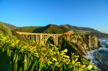 bridge crossing a ravine along a shoreline