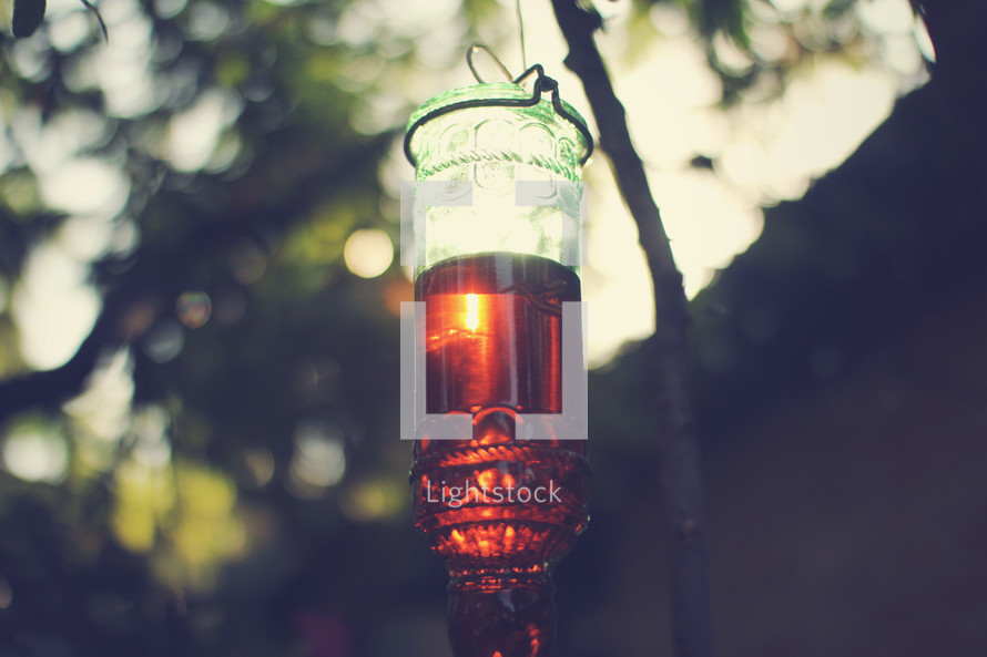 glass hummingbird feeder at sunset