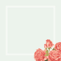 roses in the corner of a box