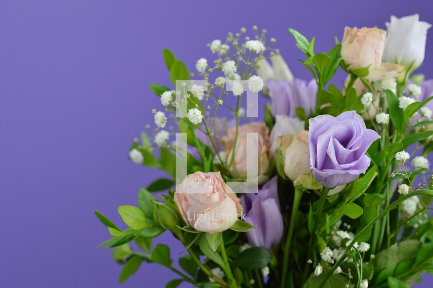purple rose bouquet on a purple background