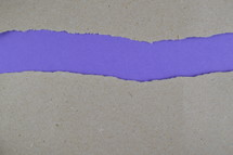 purple under gray torn paper