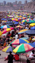 umbrellas on a crowded beach
