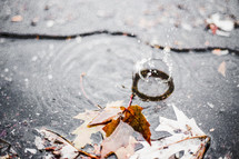 water droplet splash in a puddle