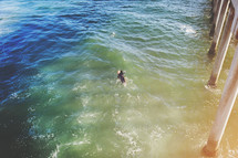 surfer catching a wave by a pier