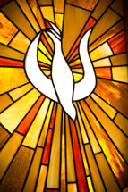 white dove stained glass window