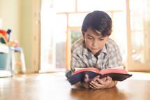 Boy reading BIble