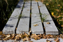 grass growing through wood planks