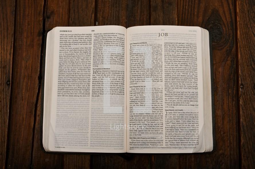 Scripture Titles :: Job