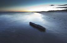 drift wood rolling onto a beach