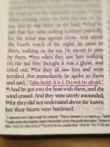 Magnified passage in Bible, Mark 6:50.