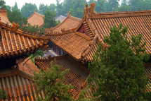 Rooftops of Chinese buildings, part of the Summer Palace, near Beijing