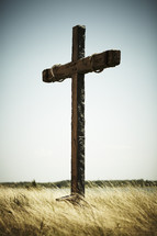 The cross standing in a field