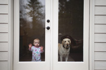 a dog and infant a back door window