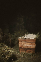 The manger of Jesus' birth inside the stable