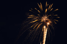 Fireworks exploding in the night sky.