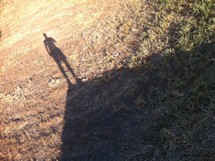 Man's shadow in grass