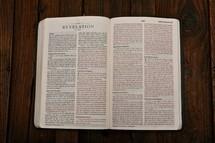 Scripture Titles - Revelation