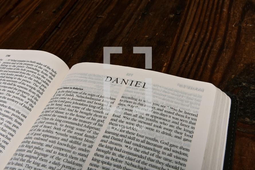 Scripture Titles - Daniel