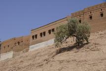 Desert city fortified walls.