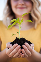 cupped hands holding a plant