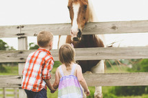 brother and sister looking at a horse