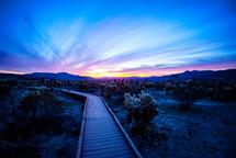 boardwalk through a desert